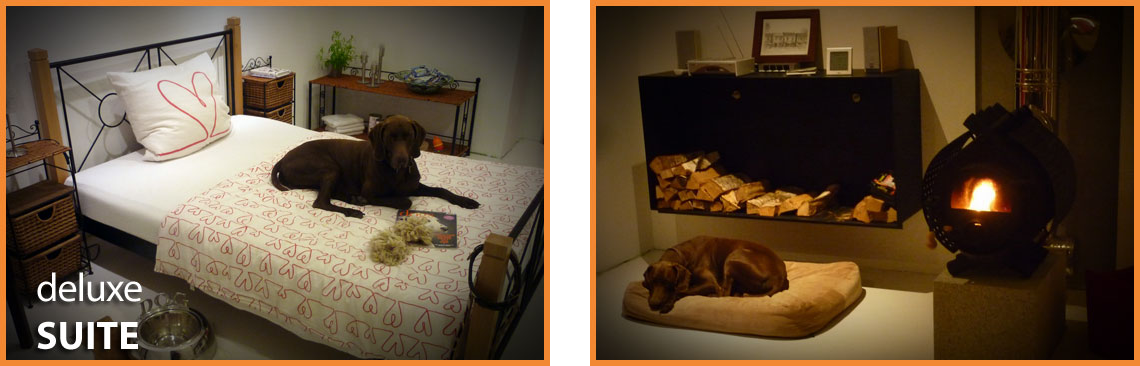 Dog Lodge Hundehotel - Deluxe Suite