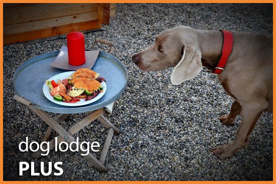 Dog Lodge Hundehotel - Dog Lodge Plus