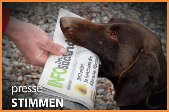 Dog Lodge Hundehotel - Pressestimmen