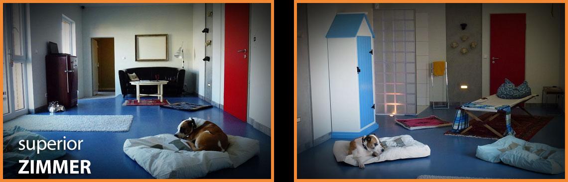 Dog Lodge Hundehotel - Superior Zimmer